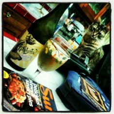 A glass of wine, a good magazine & my kitties after a long day at work