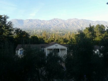 Descanso Gardens: Personal Challenge, Day 70 (11.25.12)